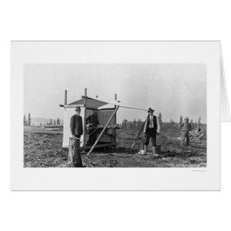 Lemonade Stand in Alaska 1916 Greeting Cards