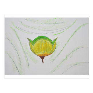 lemongrass poppy jpg postcards