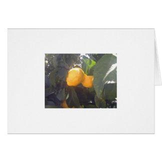 Lemons? Card