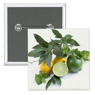 Lemons For use in USA only.) 15 Cm Square Badge