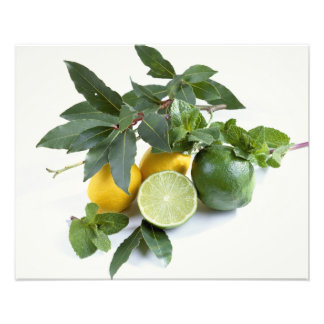 Lemons For use in USA only.) Art Photo
