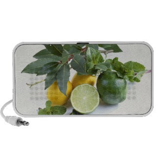 Lemons For use in USA only.) Travelling Speakers