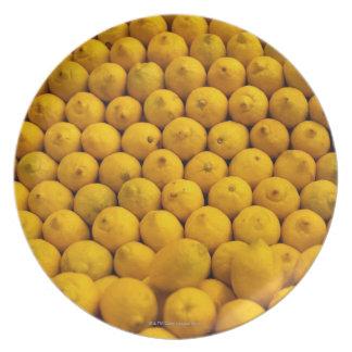Lemons Plate