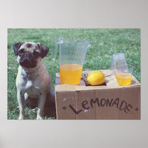 Lemons Pug Poster Print