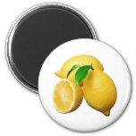 Lemons Refrigerator Magnet