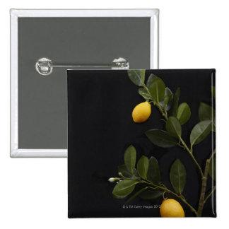 Lemons still on their Branch 15 Cm Square Badge