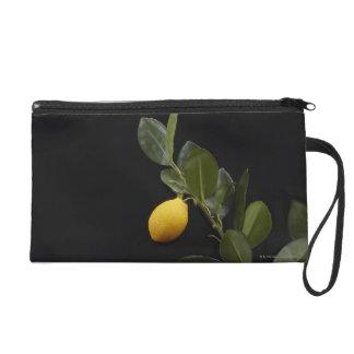 Lemons still on their Branch Wristlet Clutch
