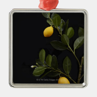 Lemons still on their Branch Christmas Ornament
