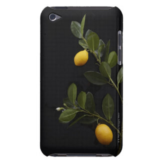 Lemons still on their Branch iPod Touch Cover