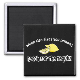Lemons... Tequila Square Magnet