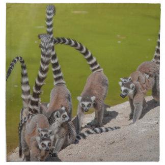 lemur at the zoo napkin