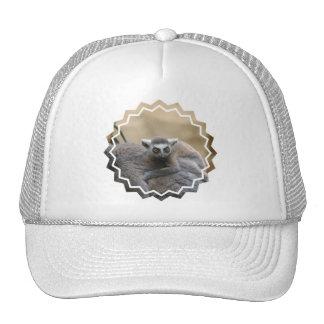 Lemur Baby  Baseball Hat