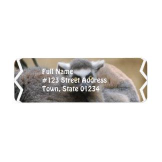 Lemur Baby Mailing Label Return Address Label
