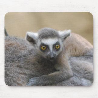 Lemur Baby  Mouse Pads