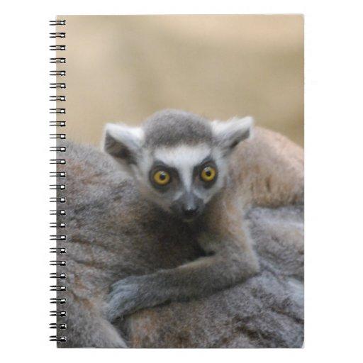 Lemur Baby  Notebook