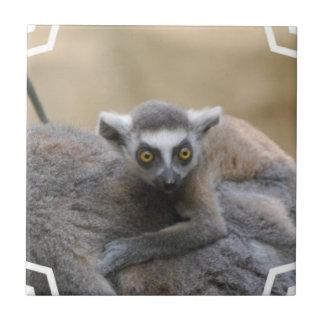 Lemur Baby  Tile