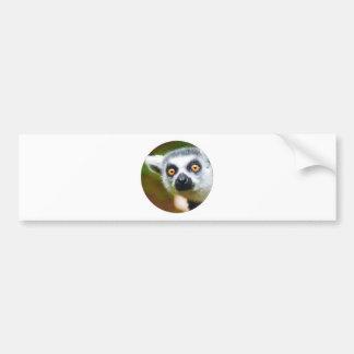 """""""Lemur"""" Bumper Sticker"""