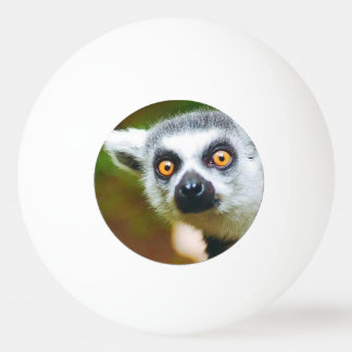 """Lemur"" design gifts and products Ping Pong Ball"