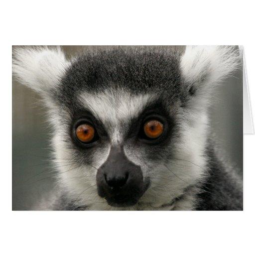 Lemur Face  Greeting Card