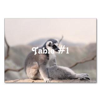 Lemur in Madagascar Table Card