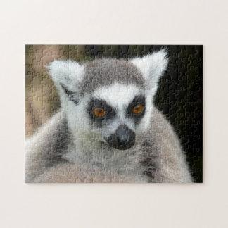 lemur jigsaw puzzle
