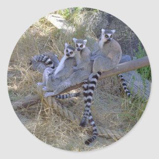 Lemur Line Stickers