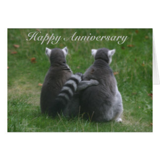 Lemur love,! .. Happy Anniversary Greeting Card