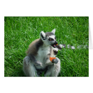 Lemur Lunch Card