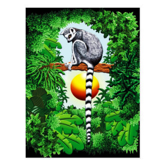 Lemur of Madagascar Postcard