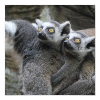 Lemur Piggy Back Invitations