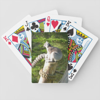 Lemur Playing Cards
