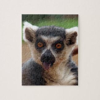 Lemur Puzzles