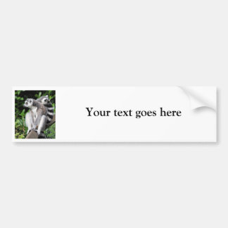 Lemur ring-tailed cute photo custom bumper sticker