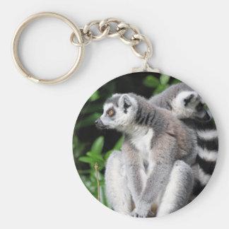 Lemur ring-tailed cute photo keyring, keychain