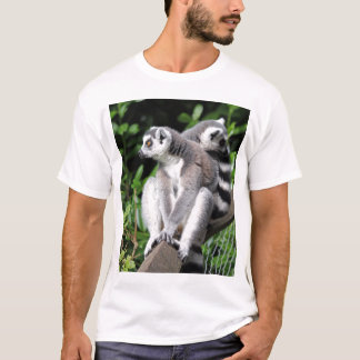 Lemur ring-tailed cute photo mens t-shirt