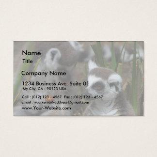 Lemurs Animals Business Card