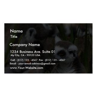 Lemurs Animals Business Card Templates