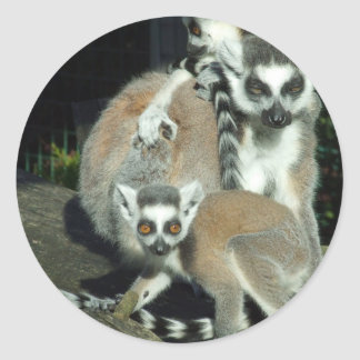 Lemurs Classic Round Sticker