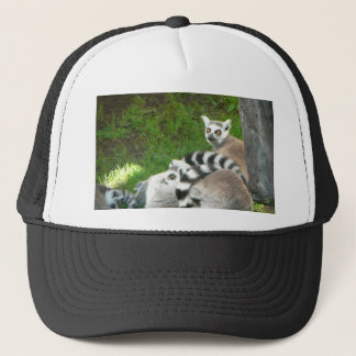 Lemurs Trucker Hat