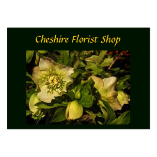 Lenten Rose Hellebore Florist Business Card Template