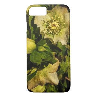Lenten Rose Hellebore Flowers iPhone 7 Case