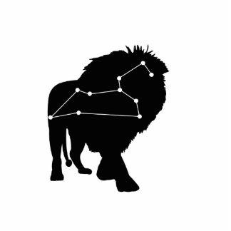 Leo Constellation/Zodiac Photo Sculpture