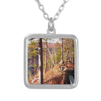 Leo Harrison St Pk  Path 3 Cliffside Path.JPG Custom Necklace