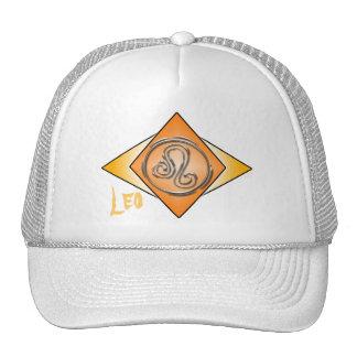 Leo Triangles w/ Leo Hat