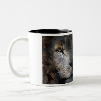 Leo Two-Tone Coffee Mug
