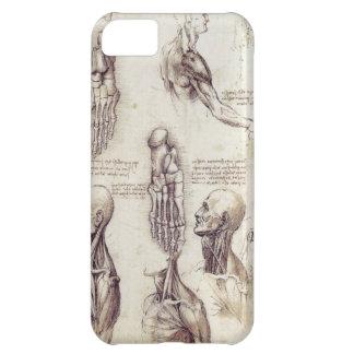 Leonardo Da Vinci Medical sketches, body parts iPhone 5C Case