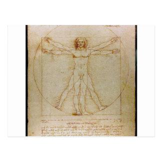 Leonardo Da Vinci, The Vitruvian Man,Renaissance Postcard