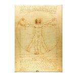 Leonardo Da Vinci Vitruvian Man Gallery Wrapped Canvas