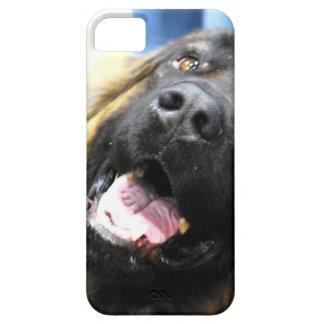 Leonberger iPhone 5 Cases