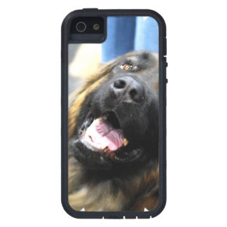 Leonberger iPhone 5 Covers